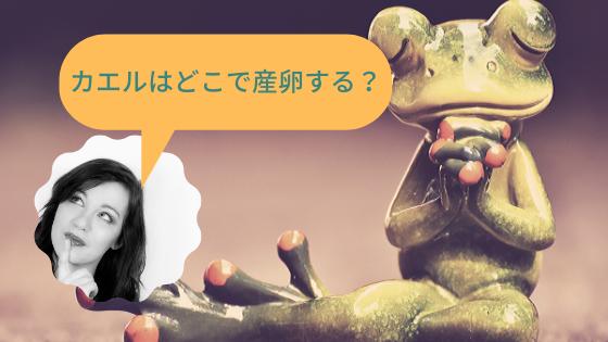 カエルはどこで産卵する?